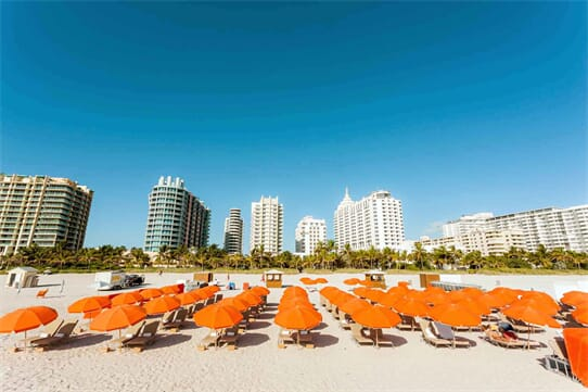 Royal Palm South Beach Miami, Tribute Portfolio